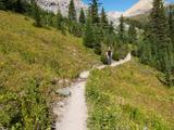 On the trail to Helen Lake